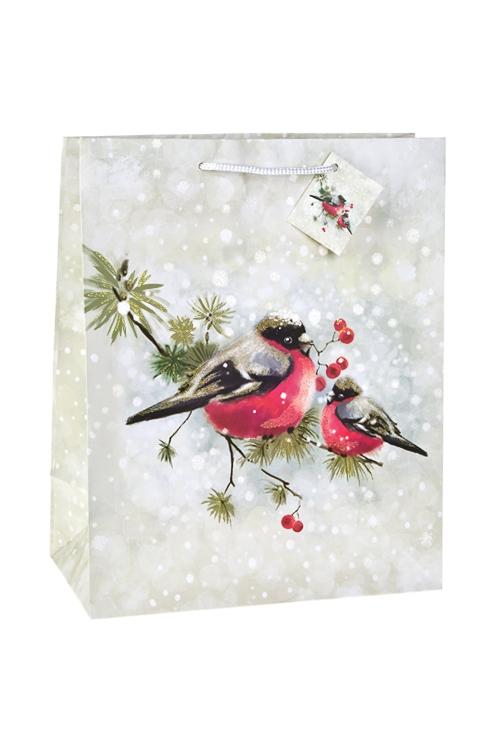Пакет подарочный новогодний Парочка снегирейПакеты «С Новым годом и Рождеством»<br>26.4*13.6*32.7см, бум., матовый, с декором<br>