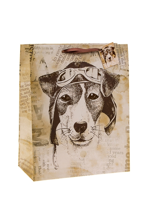 Пакет подарочный Пес СчастливчикПакеты на любой повод<br>26.4*13.6*32.7см, бум., с декором<br>