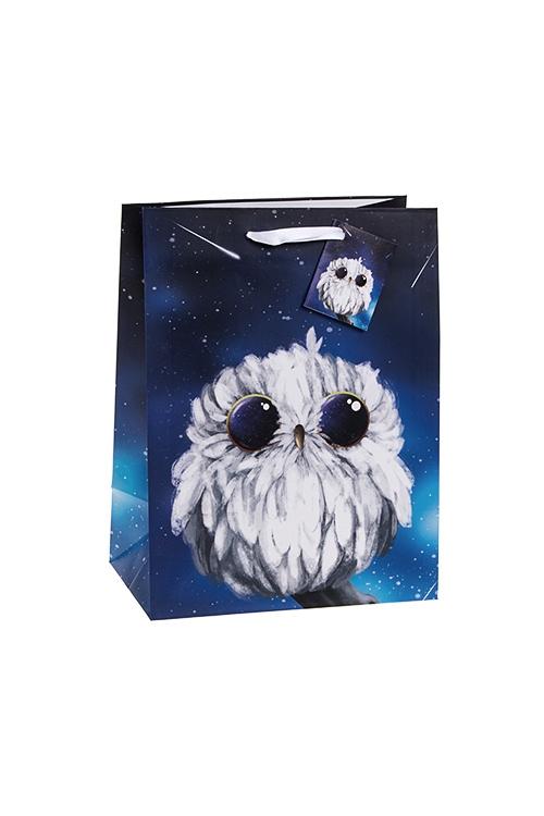 Пакет подарочный Совик и космосСувениры и упаковка<br>19*25см, бум., синий<br>