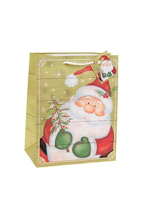 Пакет подарочный новогодний Дед Мороз с елочкойПакеты «С Новым годом и Рождеством»<br>18*10*22.7см, бум., матовый<br>