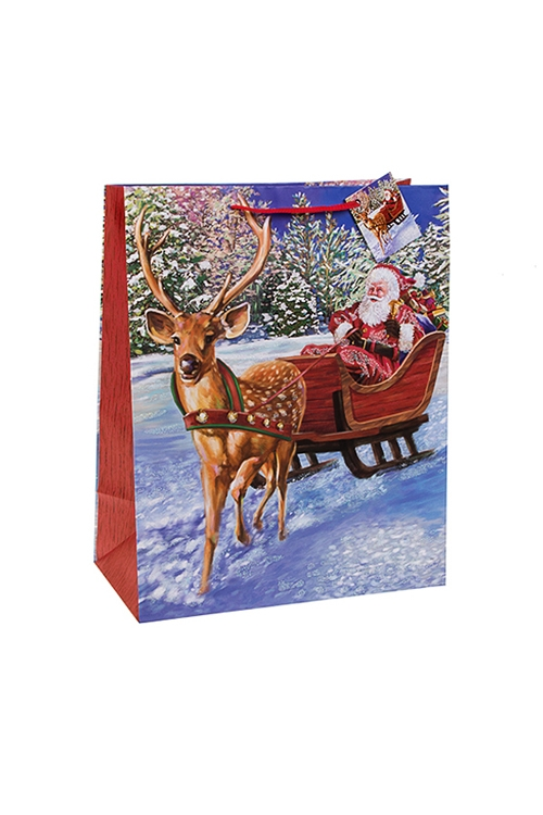 Пакет подарочный новогодний Дед Мороз в саняхСувениры и упаковка<br>18*10*22.7см, бум., матовый, с декором<br>