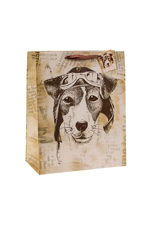 Пакет подарочный Пес СчастливчикСувениры и упаковка<br>18*10*22.7см, бум., с декором<br>