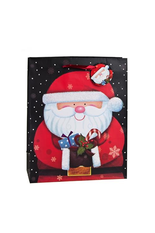 Пакет подарочный новогодний Веселый Дед МорозСувениры и упаковка<br>19*11.4*25см, бум., матовый, с декором<br>