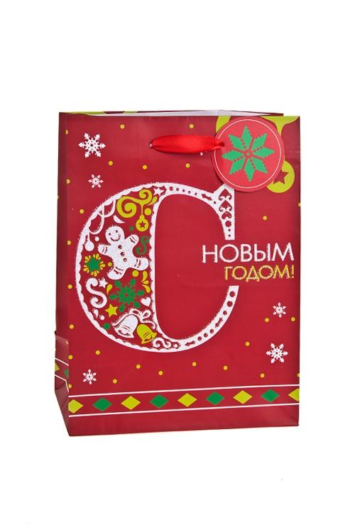 Пакет подарочный новогодний Поздравление к Новому годуСувениры и упаковка<br>19*11.4*25см, бум., матовый, с декором<br>
