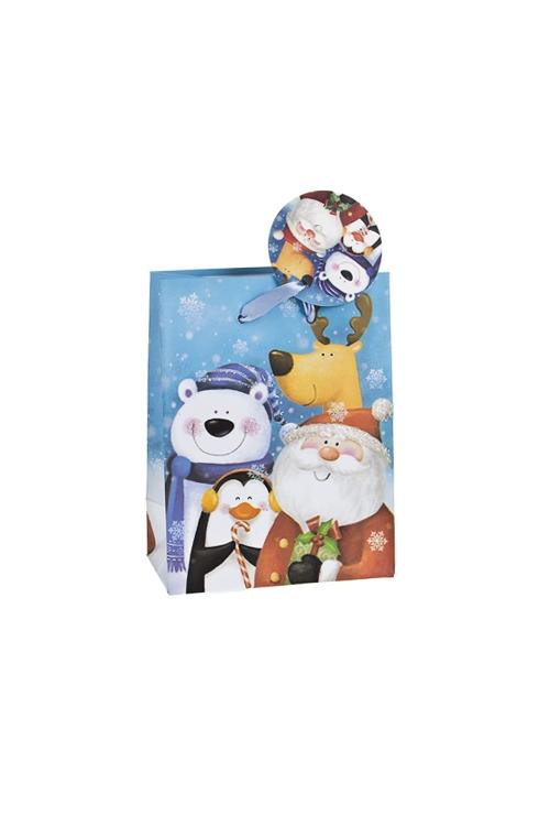 Пакет подарочный новогодний Дружная компанияПакеты «С Новым годом и Рождеством»<br>11.1*6.4*14.6см, бум., матовый, с декором<br>