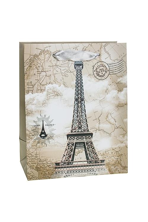 Пакет подарочный Эйфелева башняСувениры и упаковка<br>18*10*23см, бум., матовый<br>